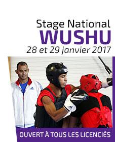 Stage Wushu